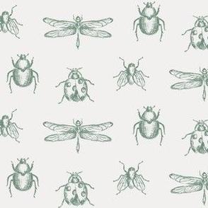 Vintage Bug Illustrations in Green & Ivory