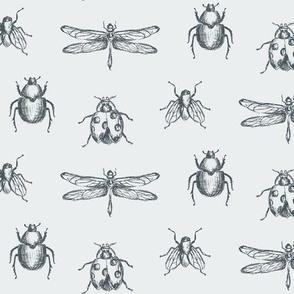 Vintage Bug Illustrations in Navy and Light Blue