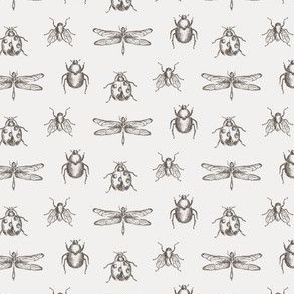 Vintage Bug Illustrations in Brown and Ivory