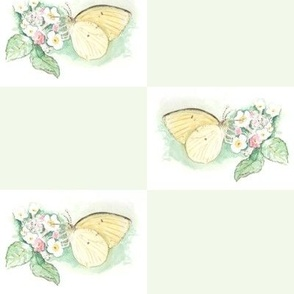 Watercolor Sulphur Butterfly Checkerboard on Green