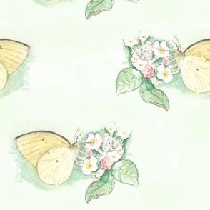 Watercolor Sulphur Butterfly on Mint Green