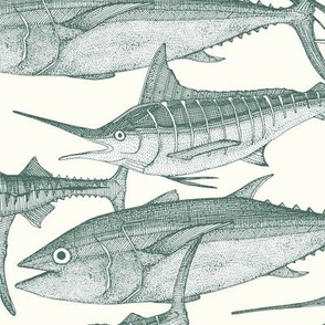 Atlantic fish pine