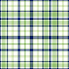 Royal Blue Mint Green and White Plaid