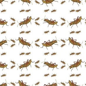 Retro Bugs_Grasshoppers