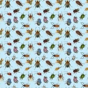 Bugs 1 on cyan