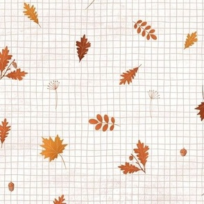 Autumn maple and oak leaves on white with grid
