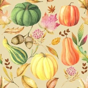 Beige Pumpkin patch