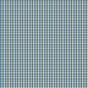 Small Scale Vintage Blue Gingham Check Plaid
