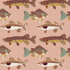 Lake Fish Pink