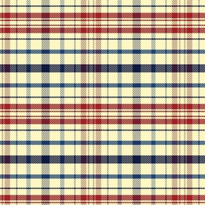 Holiday Plaid blue and red