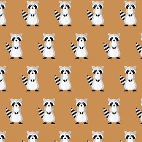 Raccoons on brown