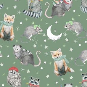 Night Owl And Woodland Animals