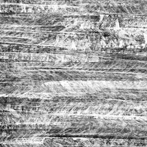 texture - black and white