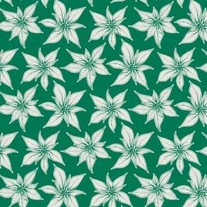 Poinsettia, Green