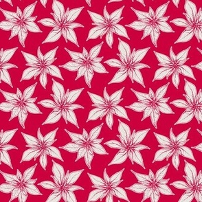 Poinsettia, Red