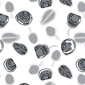 baby scallops, black on white (5 inch repeat)