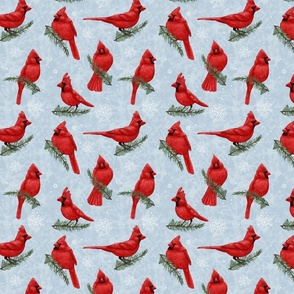Northern Cardinals Baby Blue small