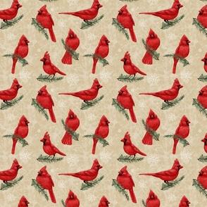 Northern Cardinals Warm Beige