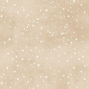 Snow Covered Tan Coordinate