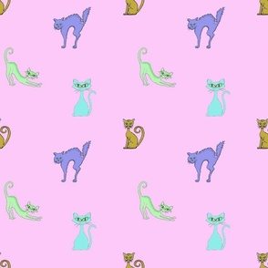 Cats on pink