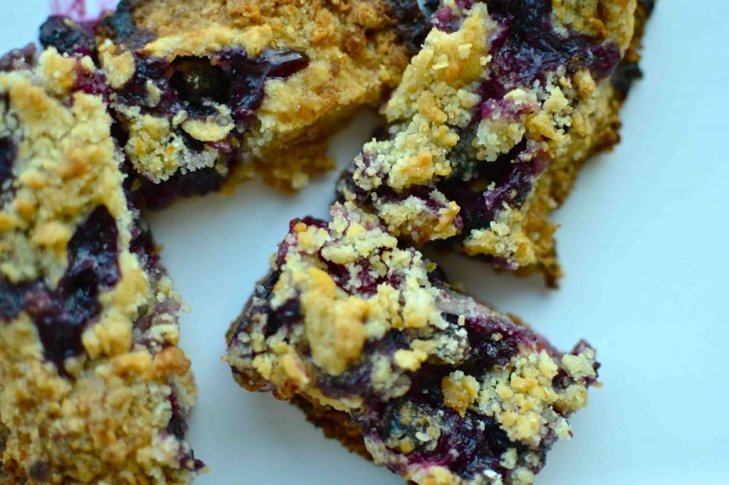 Blueberry Crumb Bars- by Alia Wilhelm