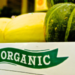 A Guide to Everything Organic