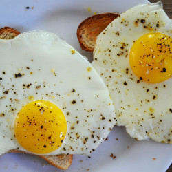 The Comprehensive Guide to Ordering Eggs