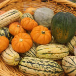 How You Should Be Cooking with Squash This Season