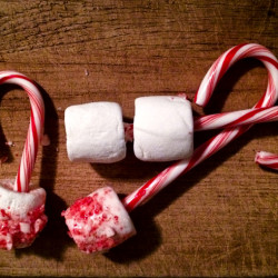 10 Do-it-Yourself Candy Cane Recipes to Sweeten Your Holidays