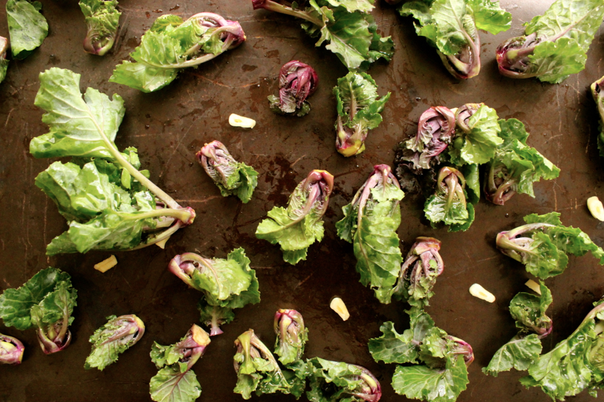 Brown University Transfer >> Kalettes: The Kale-Brussels Sprout Hybrid That's About to ...