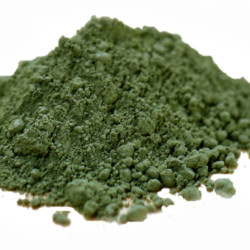 Everything You Need to Know About Spirulina