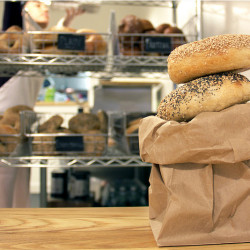 The Quest for the Best Bagel in Boston