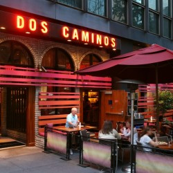 Dos Caminos: An Authentic Mexican Cuisine Worth The Extra Buck