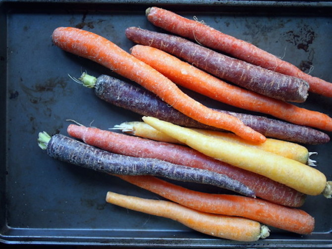 Multicolored large carrots