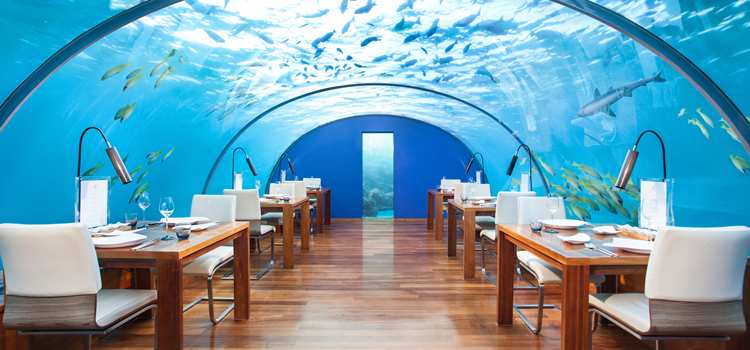 ithaa undersea restaurant - Underwater World Restaurant