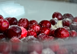 How the Cranberry Earned its Spot at the Thanksgiving Table