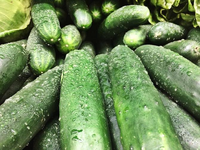 10 Things You Should Know About Cucumbers