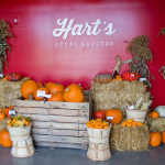 Hart's Local Grocers: All The Rochester Goodies You Love In One Place