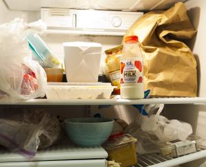 Waste fridgelandscape