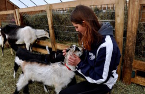 How Interning on an Organic Farm Helped Me Discover My True Passion