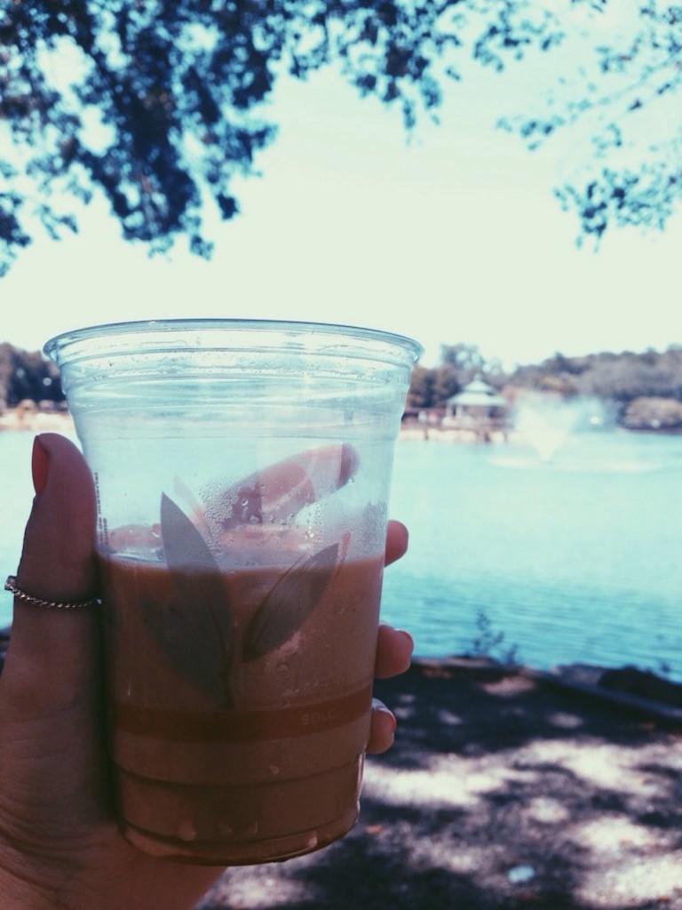 Catalina Cafe Cascades Park