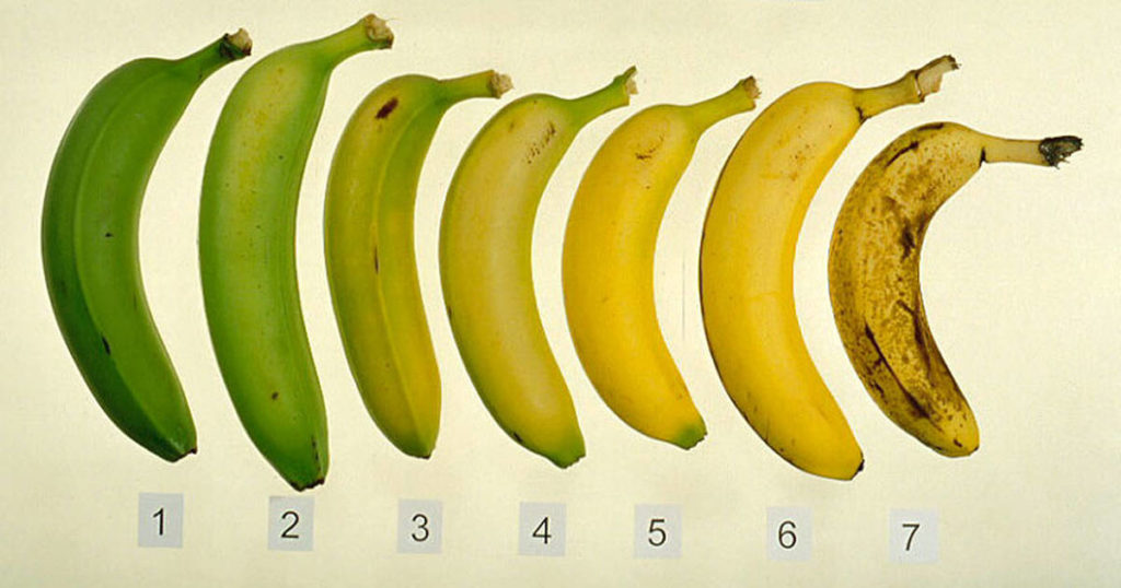 Banana is ripe