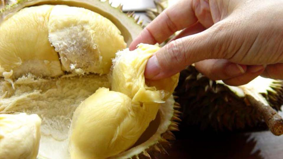 http://tulane.spoonuniversity.com/wp-content/uploads/sites/16/2015/11/Durian-Fruit-3.jpg