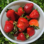 11 New Ways to Eat Strawberries at Every Meal