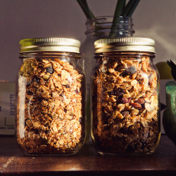 4 Must-Try Low Fat Granola Recipes