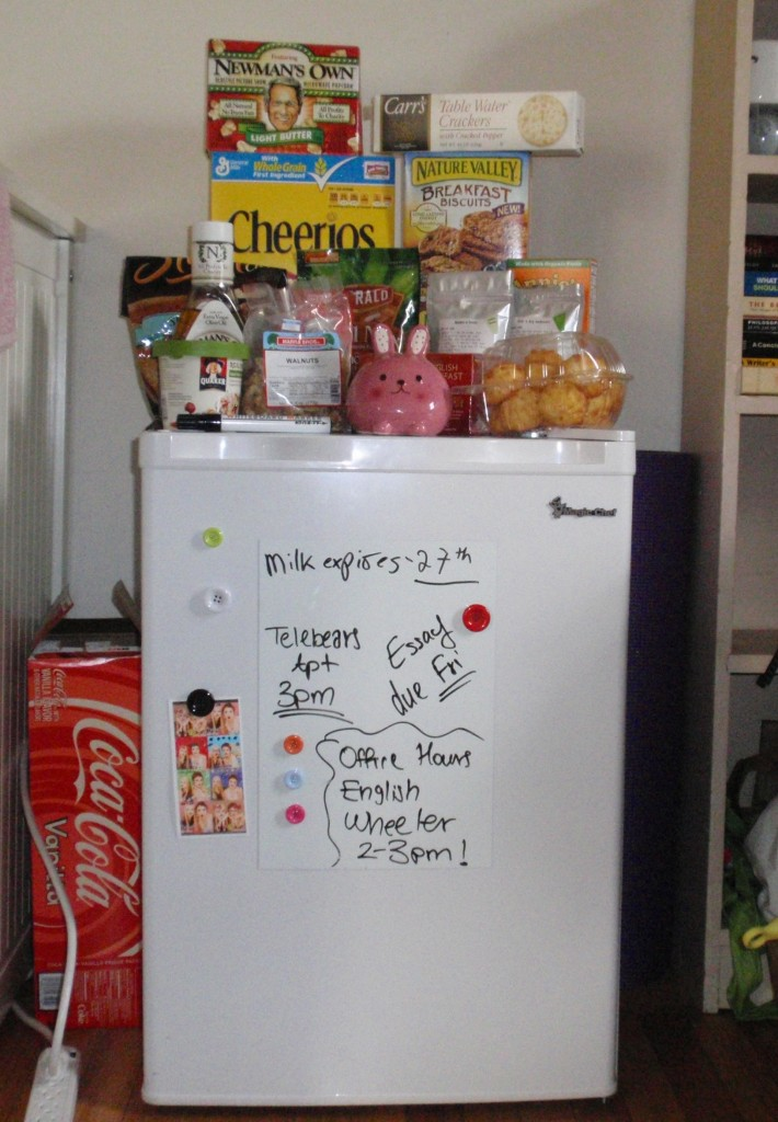 A Rookie S Guide To Setting Up A Mini Fridge