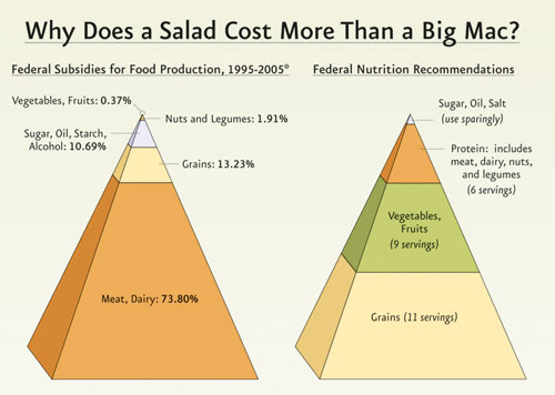 Photo courtesy of pcrm.org