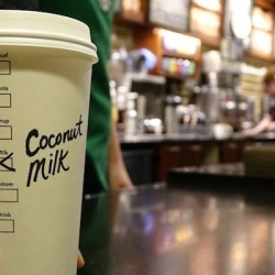 Coconut Milk Comes to Starbucks