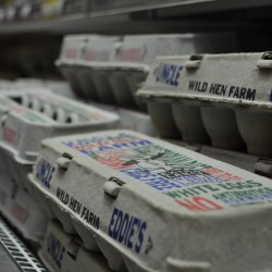 How Carton Labels Are Hiding the Truth About Egg Production
