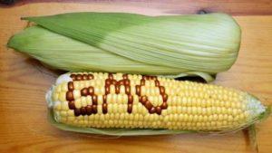 Photo courtesy of occupycorporatism.com